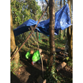 Year 3 Shelter building