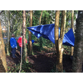 Year 5-6 Shelter building