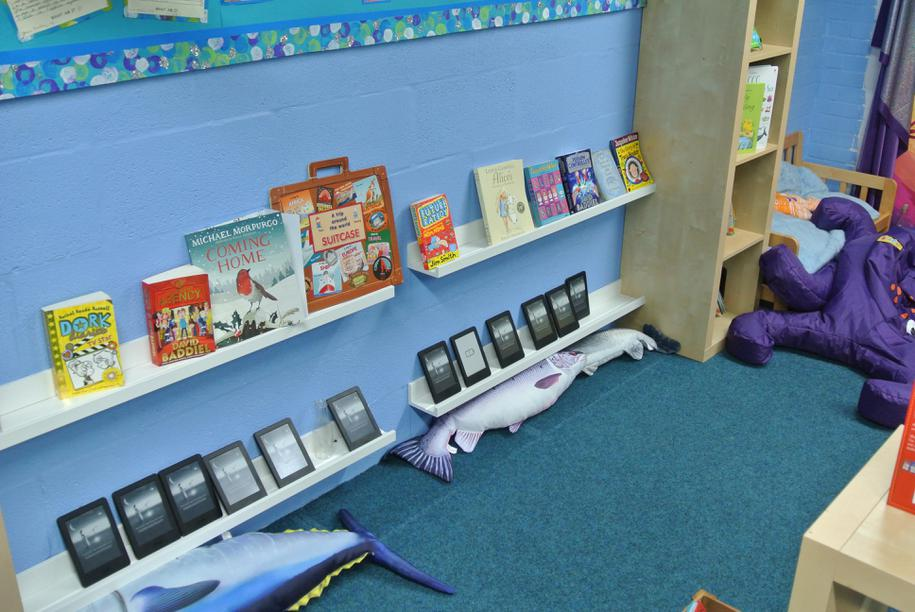 Kindle resources in our Junior library