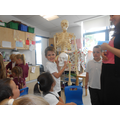 We learnt about the skeleton.
