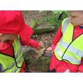 We found worms