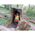 I can fit in the tree stump -  Space and measure