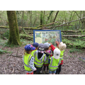 Map reading - What will we see or hear?