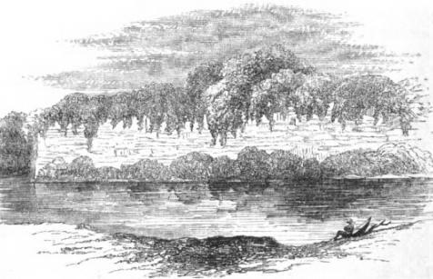 Catherwood's drawing of the wall