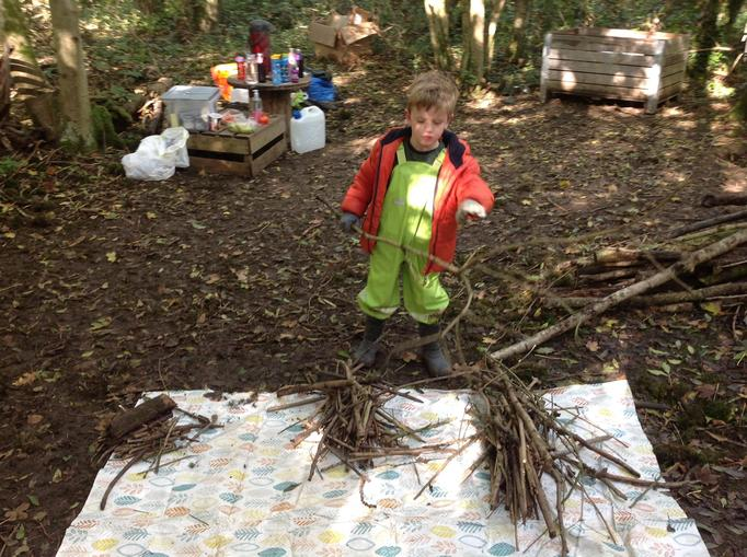 sorting sticks for kindling