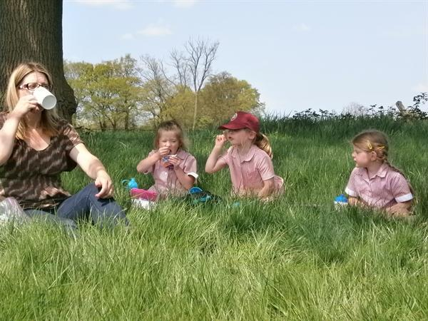 Year R trip to Ladyland Farm