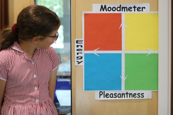 Classroom RULER Moodmeter
