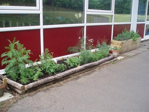 Our planting boxes