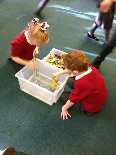 Acorn Class investigating Archimedes Principle