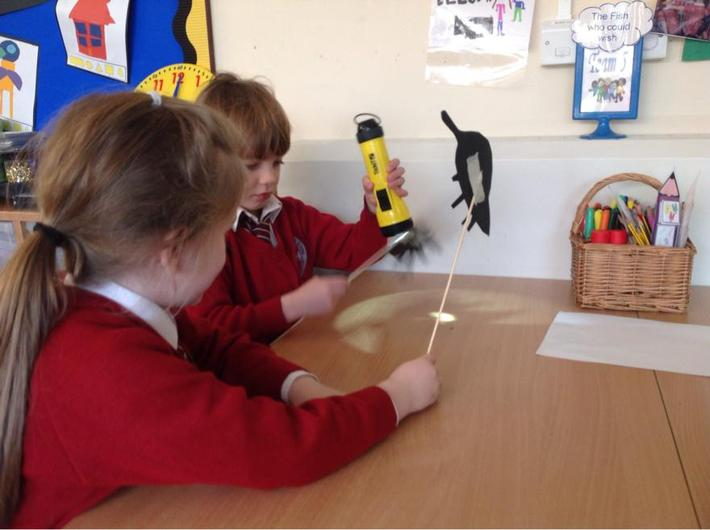 Year 1 shadow puppets