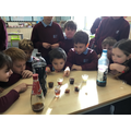 We learnt about the impact acids can have on our teeth.