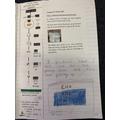 Our germination investigation.