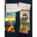 Sorting into fiction and non-fiction.
