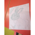 'I traced a rabbit'