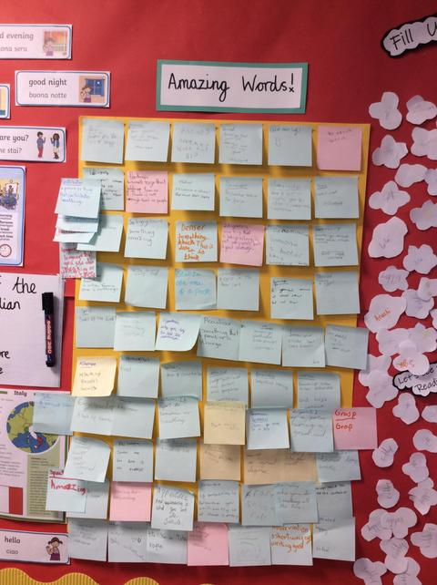 Wow - we learned so many words from our reading.