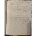 Elisa's fantastic sentences about Stone Age Boy!