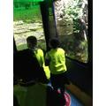 Looking around the different habitats!