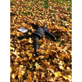 Mouhamadou wanted to make leaf angels.