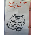 Aleena drew an amazing tiger!