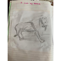 Great drawing by Aleena!