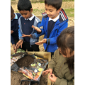 The children loved getting their hands dirty!