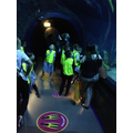We walked through the shark tunnel!