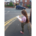 Faye counted how many colour of cars passed her street.