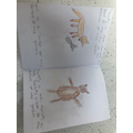 Eva's book -it's a long one, look at the pictures!