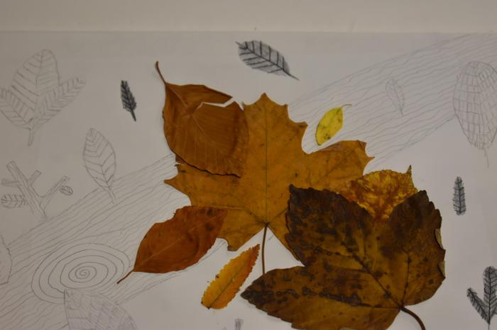 Immy's leaves