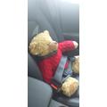Always wear a seatbelt in the car