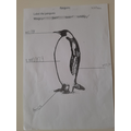 great penguin labelling