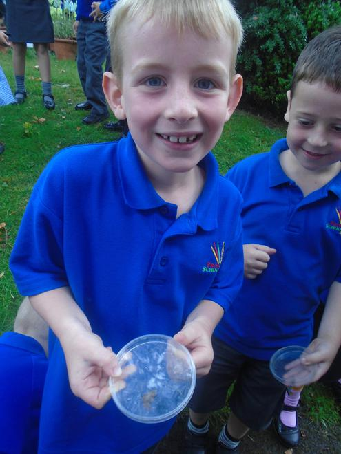 Wildlife Hunt in Year Two!