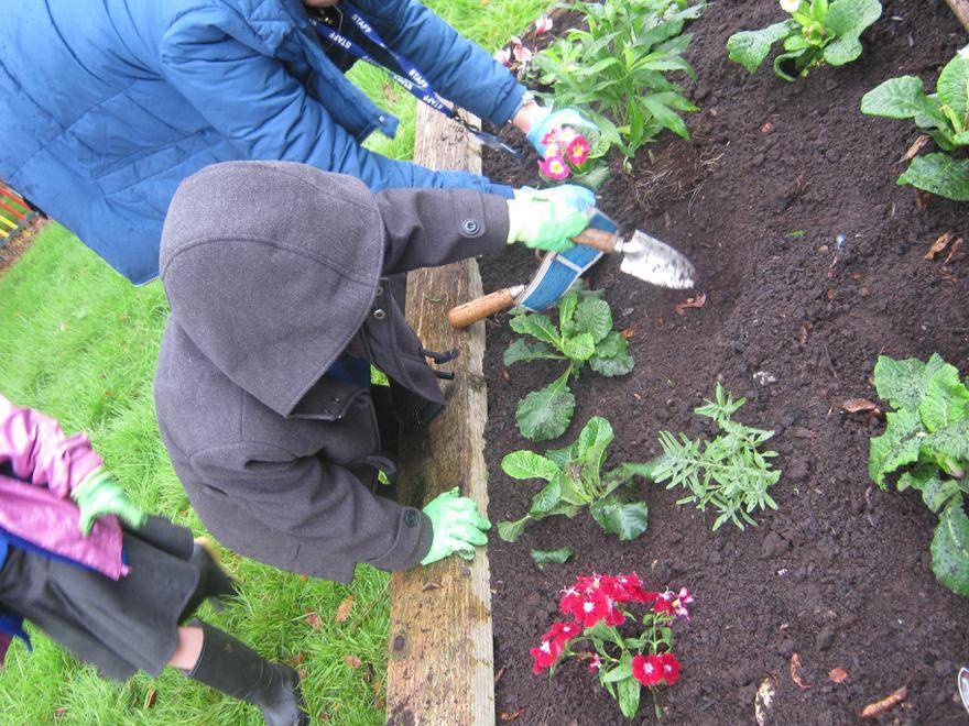 Y1 - Gardening