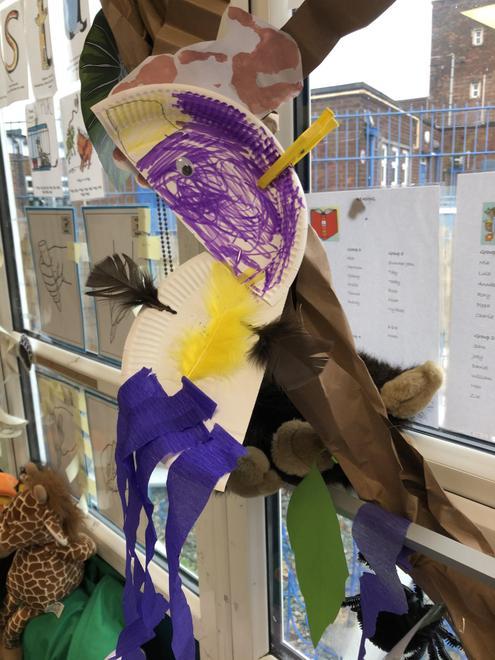 Our parrots