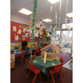 A beanstalk has grown in the classroom!