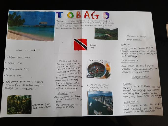 Lily J (3H) - Tobago Report