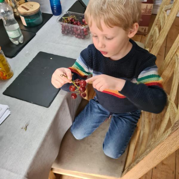 Isaac counting grapes!