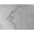 Super dinosaur Shifa, using lines to create texture