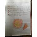 Excellent pizza poem Saffiyah!