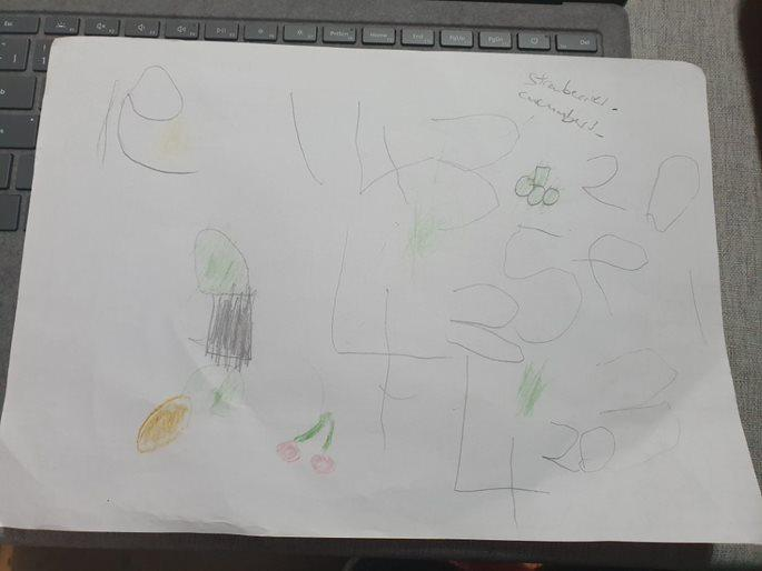 Drawing fruit and veg and writing numbers