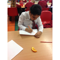 Observational Drawing in Science