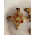 Completed firework biscuit