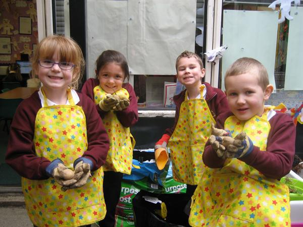 The potato planting team.