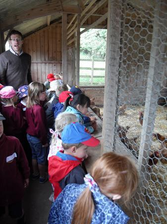 An exciting trip to the farm!