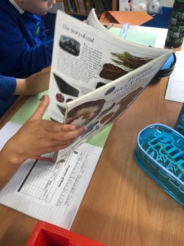 Then we have been using books to find out more about them.