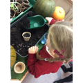 "Investigating "" I wonder if it will grow?"""