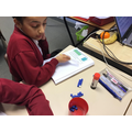 Maths: Investigating fractions