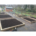 Spread compost from bins onto beds.