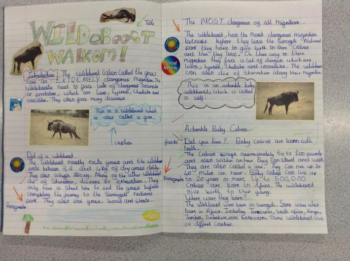 Non- Fiction Writing in Year 5