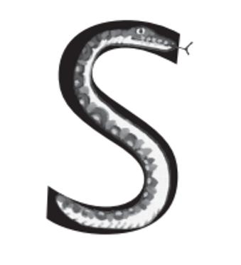 'ssss snake'